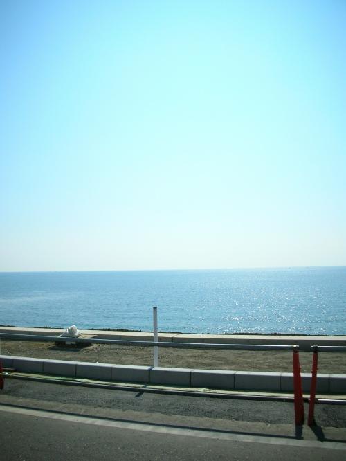 200308miura 001.jpg