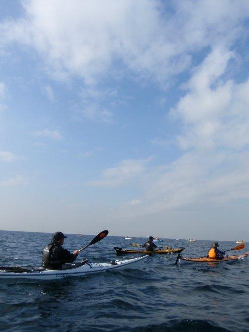 201115enoshima 007.jpg