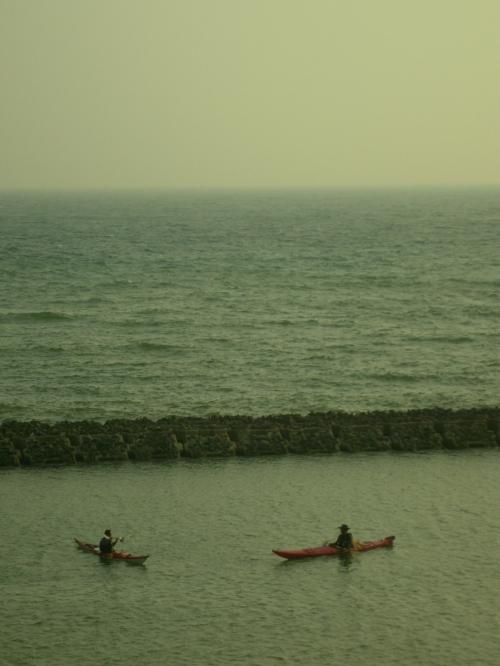 200803kuruwa 052.jpg